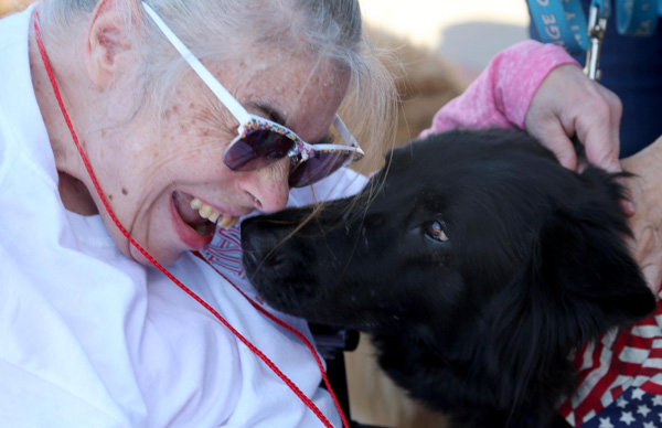 PAWS Pet Assisted Therapy