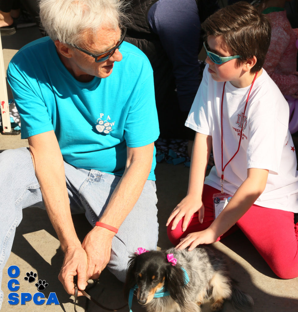 An Orange County SPCA tradition – Participation in the 2019